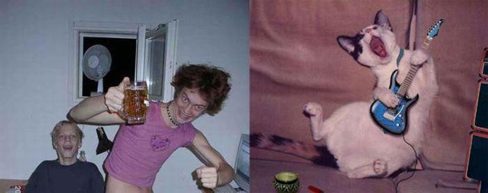 Animais vs Pessoas