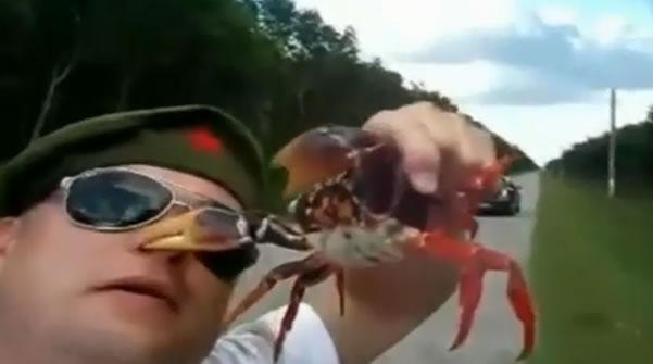 Homem é Atacado por um Caranguejo