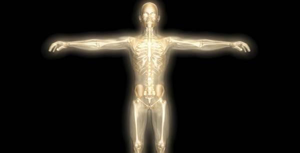 Cinco partes do corpo humano que não servem para nada