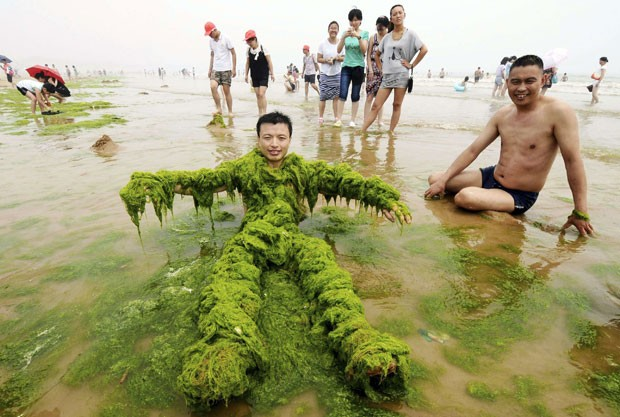 Praia cheia de algas encanta chineses