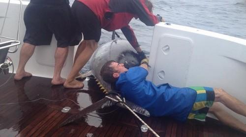 Pescadora pega atum gigantesco de 411 quilos e bate recorde mundial