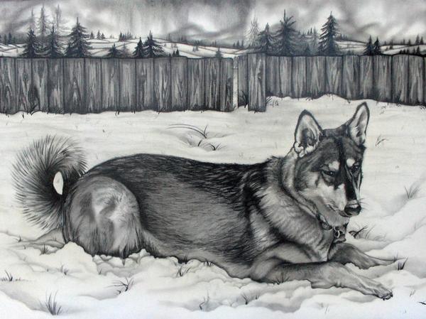 Artista pinta quadros com cinzas de pessoas e animais cremados